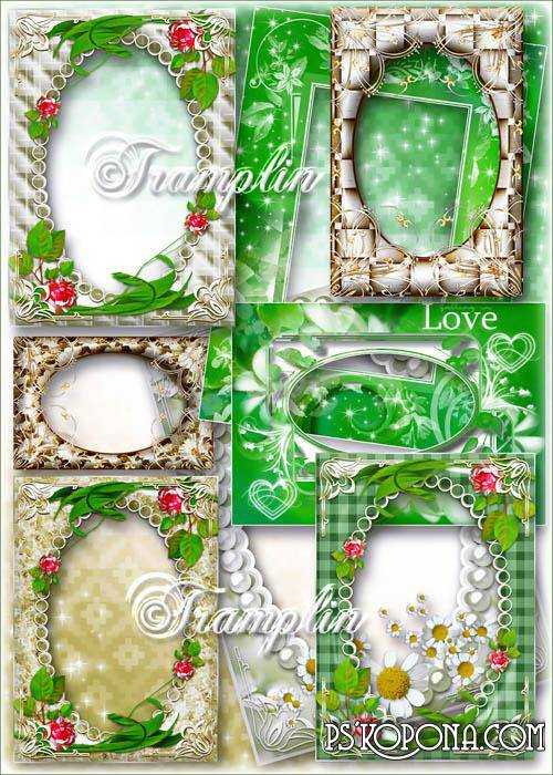 Сollection of 20 Png frames with scrolls and flowers