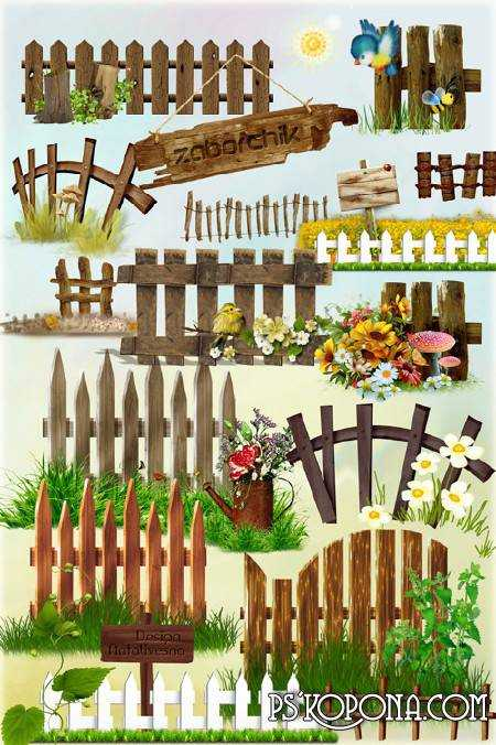 Clipart in PNG - Zaborchiki with florets, gribochka