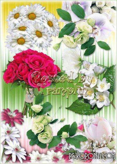 Flowers on a transparent background - clipart Png