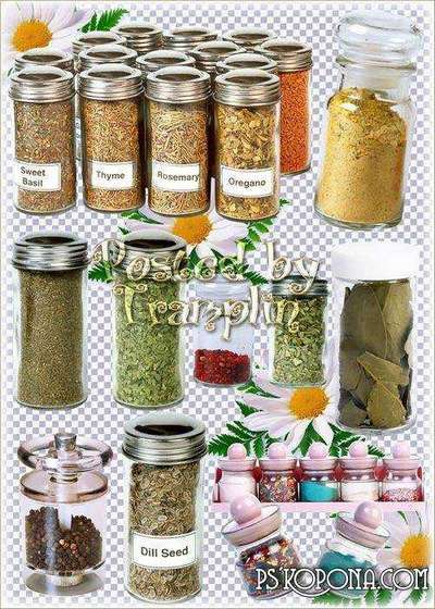 Spices in jars - graphics on a transparent background in Png
