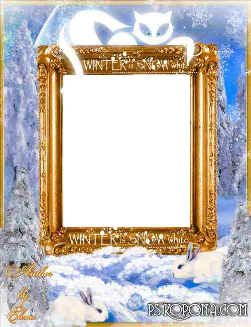 Frame for Photoshop - Magic night in the winter forest