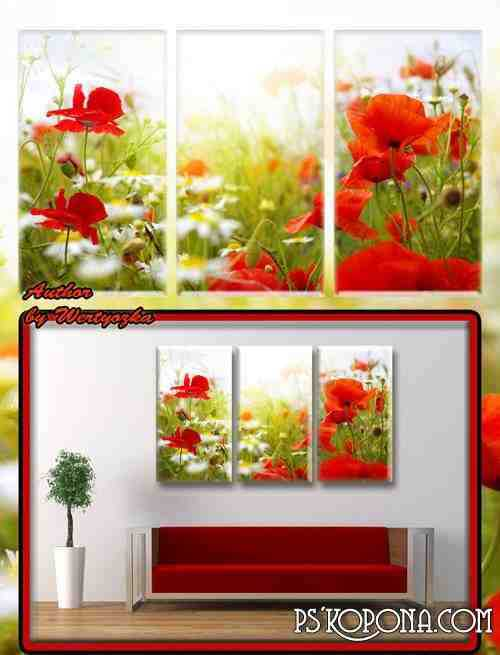 Red poppies and wildflowers - Triptych in psd format