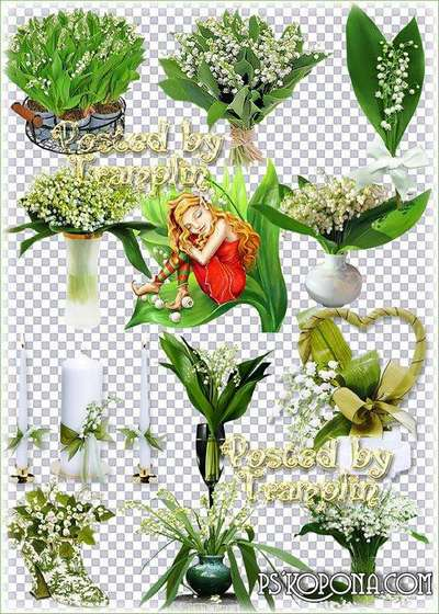 Lilies of the valley – Spring clipart on a transparent background