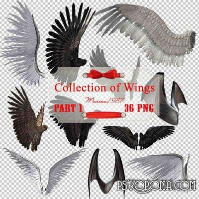Clipart PNG  - Big collection of wings (Part 1)