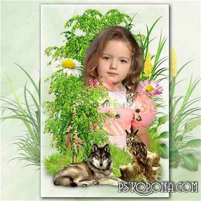 Collage frame for photos with nature - among birches