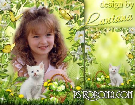 Children frame - White little kitten