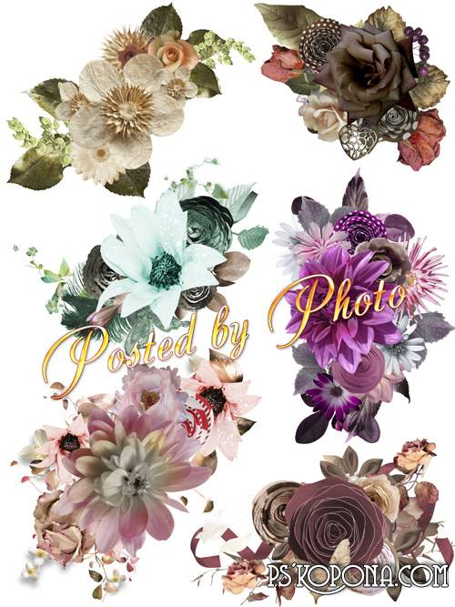 Free psd Flower clusters on a transparent background download