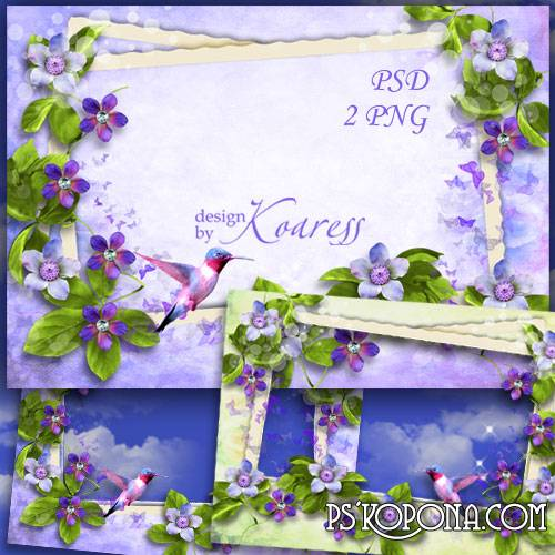 Floral photo frame for Photoshop - Flight of hummingbird