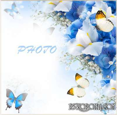 Frame for the photo - Spring butterflies