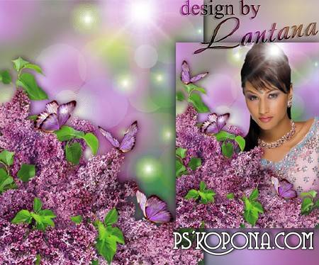 PSD source - Lilacs and butterflies