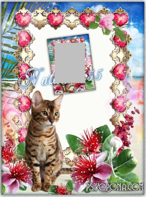 Frame for photoshop - Graceful cat