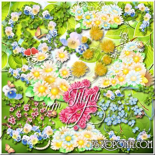Free psd Clip art - Summer flowers on a transparent background download