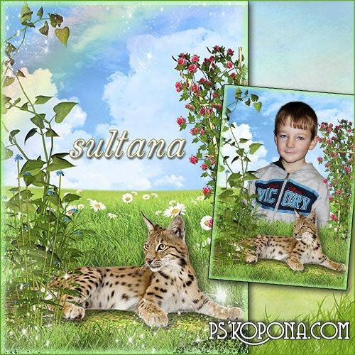 Children frame for Photoshop - Leopard on the lawn