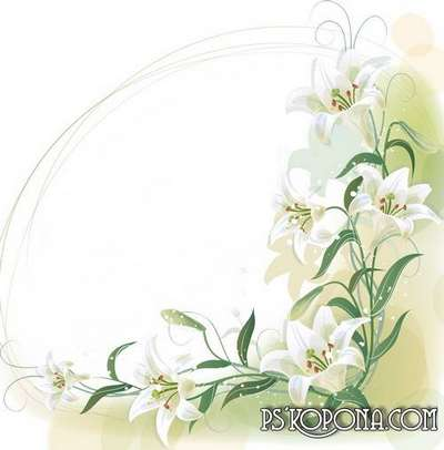 Photoframe - White lilys from VARENICH