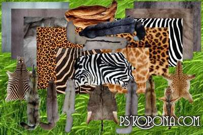 Clipart Furs and skins of animals free download