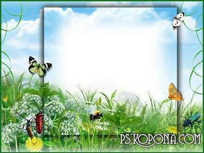 Photo frame - Flight freedom, among flowering meadow grasses