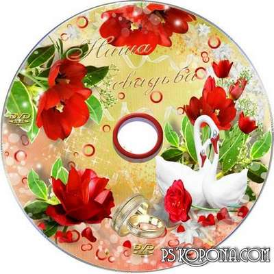 Cover and blowing-to DVD with rings and swans - Today you married