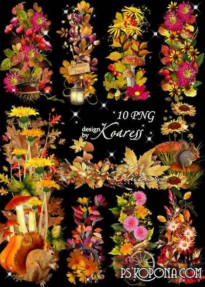 Set of png clusters and borders for autumn photos and postcards with autumn leaves, mushrooms, berries - Colors of Autumn