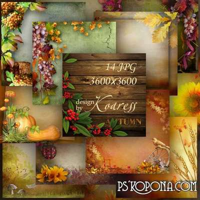 Set of autumn backgrounds for Photoshop with flowers, leaves and berries - Colorful autumn