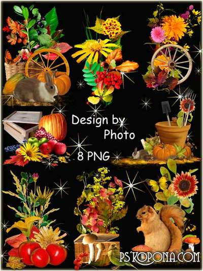 Autumn flowers, fruits , vegetables png images - Set autumn png clusters for photoshop - Free download