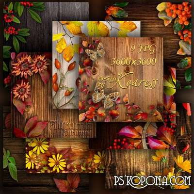 Set of autumn backgrounds for Photoshop with wood, flowers, leaves and berries