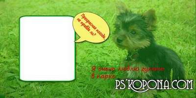 Photo album template psd template for dogs - Family Album`s of Funtik