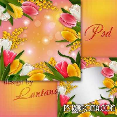 PSD source - Tulips - wonderful flowers, the harbingers of spring birth