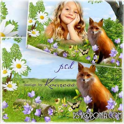 Kids photo framework - With the Red Fox on the meadow