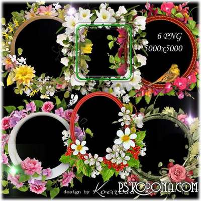 Floral png frames for Photoshop on a transparent background - Spring and summer flowers