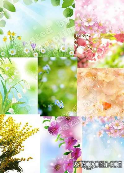 Beautiful spring backgrounds of excellent quality