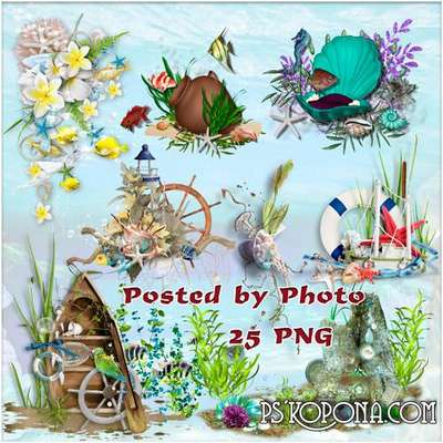 Free png images sea shells png, amphorae png and other mysteries of the sea - clipart for Photoshop on a transparent background