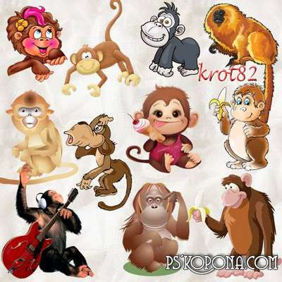 png images symbol of 2016 - Monkey, macaque, gorilla png - Free download
