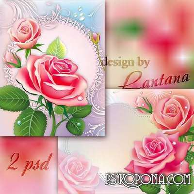 Multilayer backgrounds - Roses morning freshness froze on the petals
