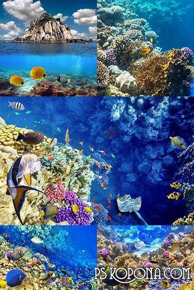 Underwater World (15 UHQ JPEG) - Backgrounds for photoshop