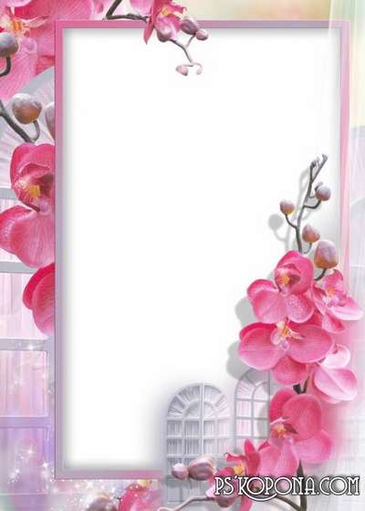 Photo frame - Delicate orchid