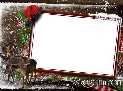 Photo frame - Cold winter forest