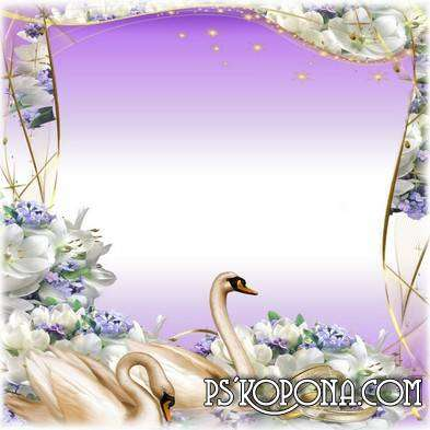 Wedding Photo Frame - Swans and wedding rings