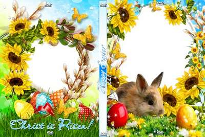 Bright festive set of covers and blowing on a DVD - Easter Bunny