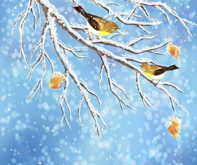 Multi-layered psd template for photoshop - birds on a snowy tree branch