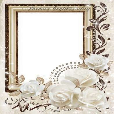 Free wedding png frame + photo frame psd  wedding white roses - Free download