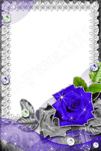 PSD Frame Blue Rose