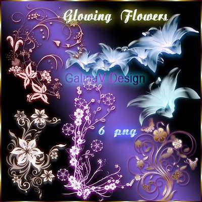 Glowing Flowers PNG