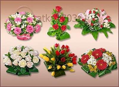 Flower compositions png download - free 12 png flowers