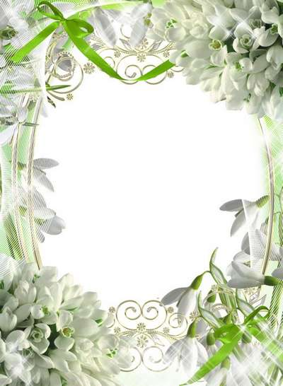 Frames - White spring flowers to replace the winter frost