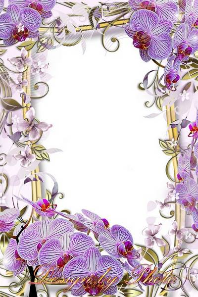 photo Frame with orchids - Among the flowers, as if nymph