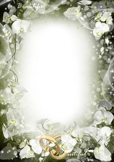 Wedding frame for Photoshop - Purity and tenderness of the white orchid