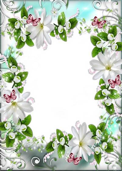 Flower Frame - Delicate white flowers