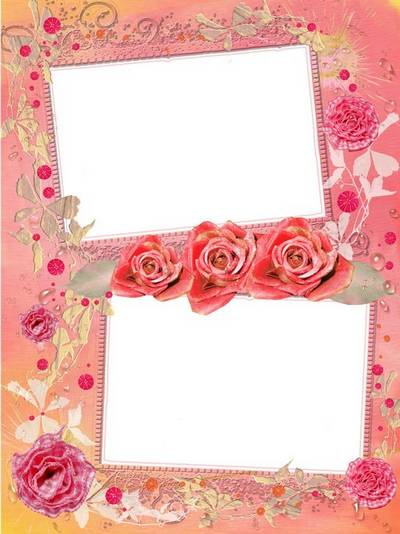 PSD Frame for two photos - Beautiful gentle roses