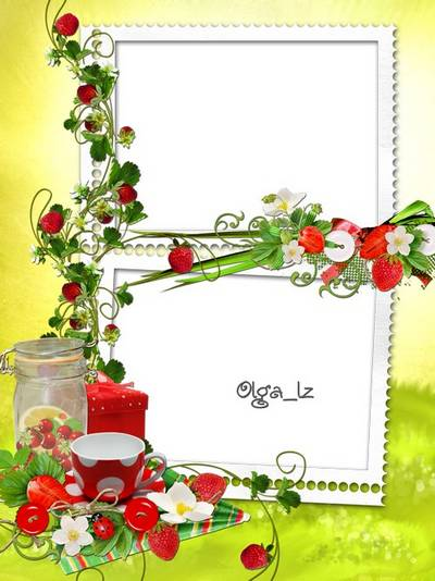 A summer frame PSD & PNG template - The Red berries