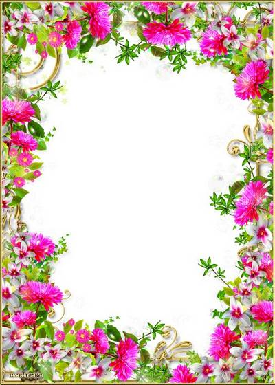 PSD Frame for photoshop - Wonderful flowers of aster